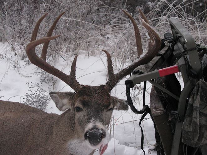 Hunting Trophy Photo